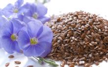 Семена льна для похудения — рецепты, правила применения, отзывы