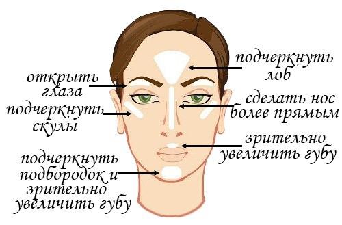Зоны нанесения хайлайтера на лицо
